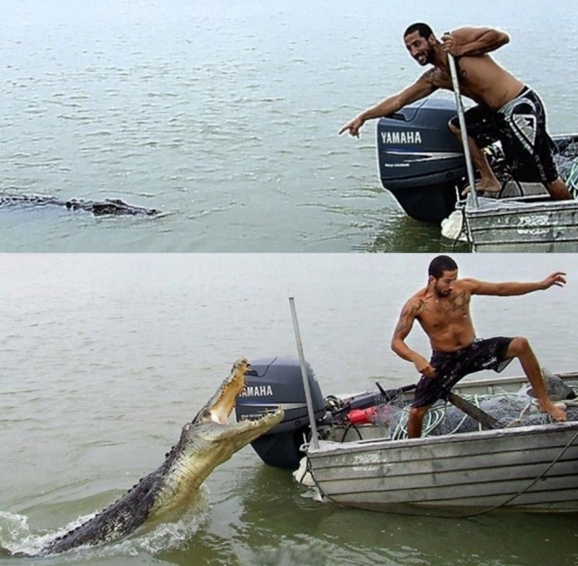 Prevent Safeguard and Escape from Crocodile Attack1 Most Dangerous Animals and How to Prevent, Safeguard and Escape from those Deadliest Animal Attack